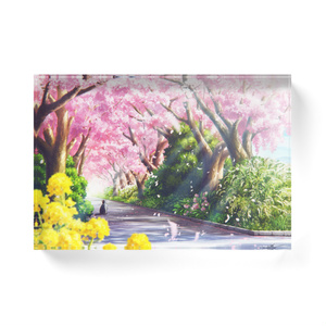 [アクリルブロック] 春のお散歩