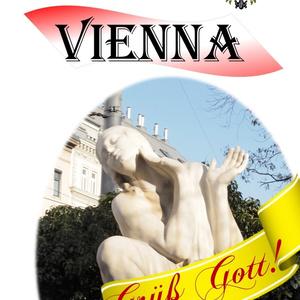 Musician Guidebook Vienna 訂正版
