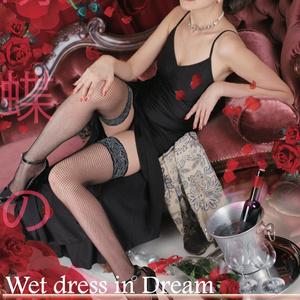 Wet Dress in Dream【パッケージ版】