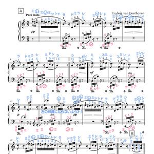 エリーゼのために(ドレミ楽譜・全指番号楽譜)
