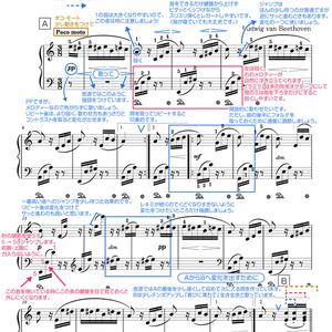 エリーゼのために(一言アドバイス楽譜・ドレミ楽譜・全指番号楽譜)