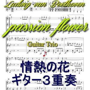 「情熱の花」ギター3重奏