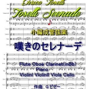 「嘆きのセレナーデ」小編成管弦楽