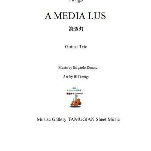 「淡き灯」ギター三重奏