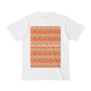 ちゃとくん 6x6 エリザベスカラー(オレンジ)