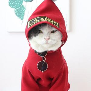 お洒落すぎ ワインレッド パーカー風 猫・小型犬洋服衣装 防寒性高い ねこ・ドッグス 秋冬ウェアコーデ