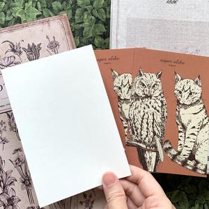 ミミズクと猫 瓜ふたつポストカードセット
