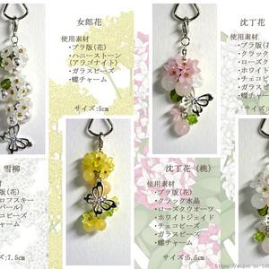 遙か6 象徴花・イメージチャーム