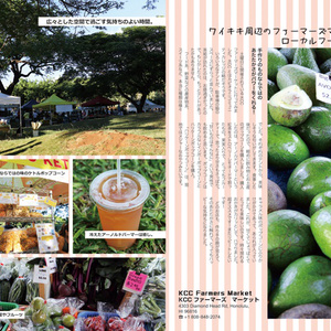 Aloha Log Honolulu Edition