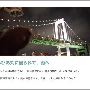 写真集「カワウソくん御蔵島をゆく(イルカ抜き)」※【注意】御蔵島で有名なイルカの写真はほとんどありません!!