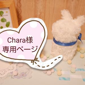 Chara様専用ページ
