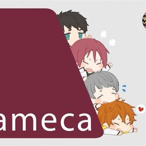 Free!ICカードステッカー『Sameca』
