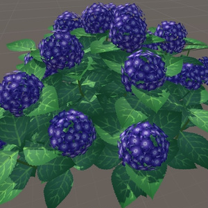 VRchat向けの紫陽花(Hydrangea)
