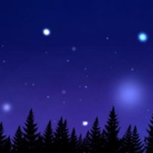 森と星空マスキングテープ✩︎⡱