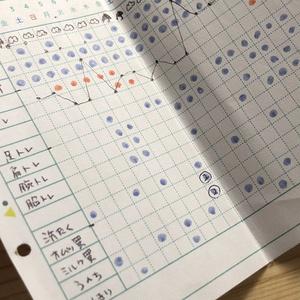 【DL版】【M5リフィル】月間ガントチャートお試し版 2020年11月分