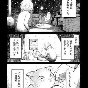 春まきマフラー猫