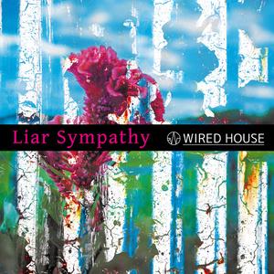 Liar Sympathy