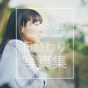 3月分・デイリー写真集☆お賽銭箱