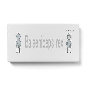 ハシビロコウモバイルバッテリー Balaeniceps rex