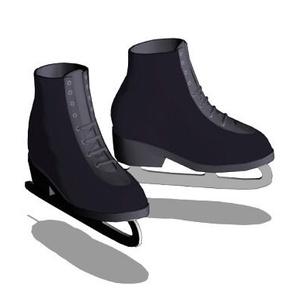 3Dスケート靴