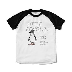 ラグランTシャツ・コガタペンギン