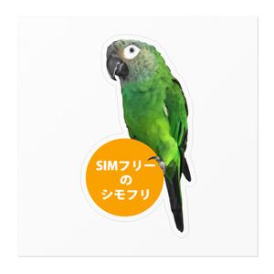 シモフリインコーSIM-白