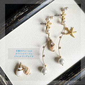 Summer sea accessories
