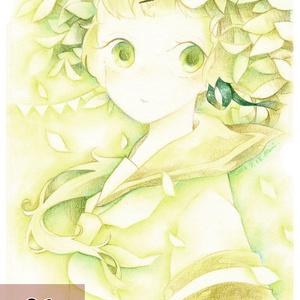 Post Card 各種2