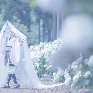 鶴丸国永写真集「 鶴詰 」