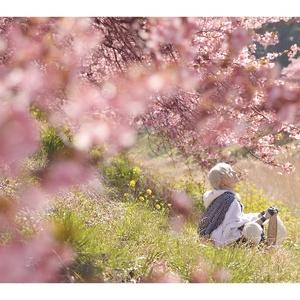 鶴丸国永写真集「 旅鶴 」