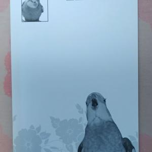ポストカード(オヘンターイ錠)