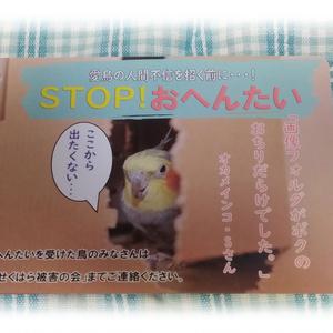 ポストカード(鳥せくはら被害の会)