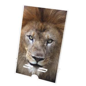 ライオン アクリルスマホスタンド(ケーブル穴あり)