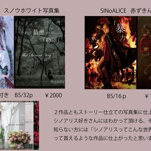 C93新刊セット【シノアリス8作品+おまけROM】