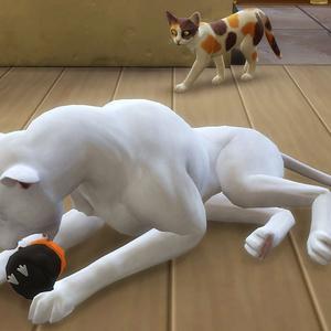 【sims4】ヒナガラスの玩具【Cats&Dogs】