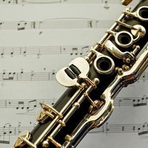 """バスクラリネットとピアノのための曲  """"~追悼~ペトラッスィ"""" 音源ファイル"""