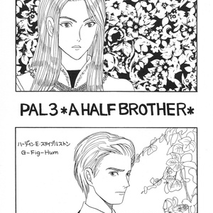 PAL3準備号Vol.2