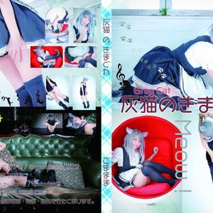 オリジナルROM【灰猫のきまぐれ】