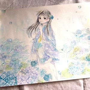 【原画】紫陽花