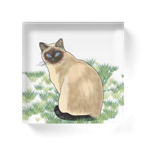 『草の上のシャム』アクリルブロック
