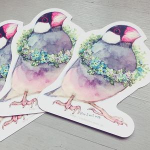 型抜きポストカード【文鳥】