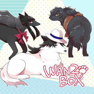 WAN2BOX