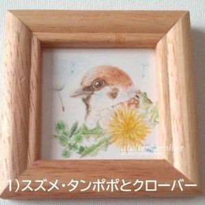 *最新作* ミニ原画 野鳥と野草シリーズ