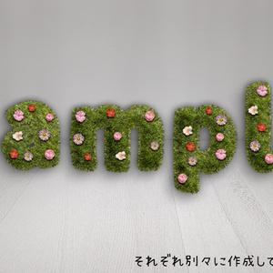 【Grass】