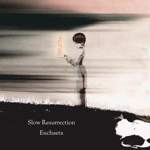Slow Resurrection