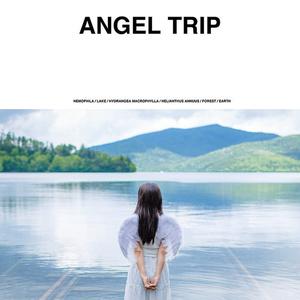 ANGEL TRIP