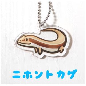 日本のトカゲのアクリルキーホルダー