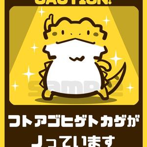 【カーステッカー】フトアゴヒゲトカゲがノっています