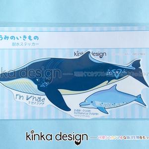 耐水ステッカー_ナガスクジラとミナミハンドウイルカ
