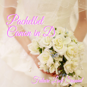 Pachelbel Canon in D (編曲:Future Link Sound)